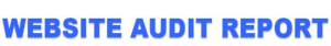 Website Audit headline