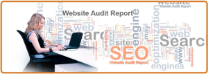 audit report 2