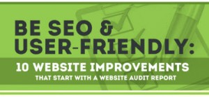 1 Website Audit tips